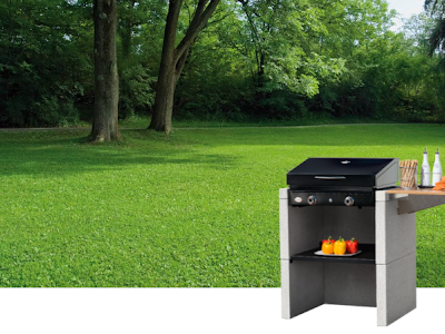 What All People Ought To Find Out About Gas Grills